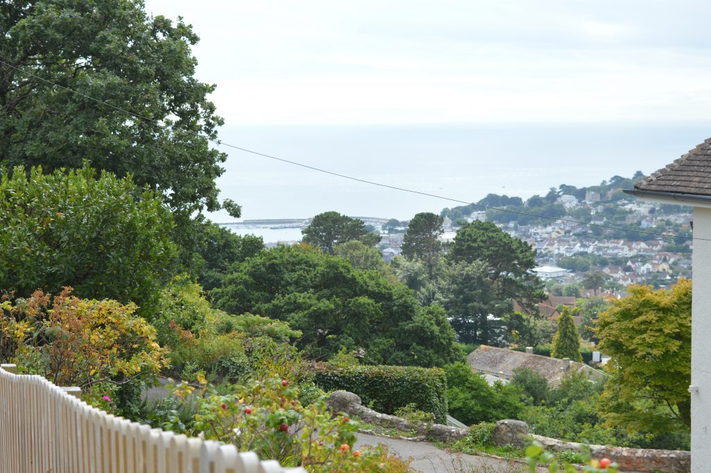 Lyme_Regis_Cobb_from_Timber_Hill