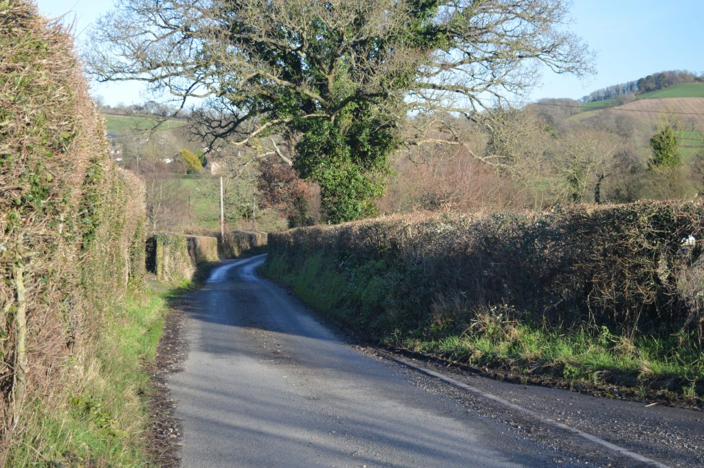 Walk 100 metres down the lane to the stile on the right