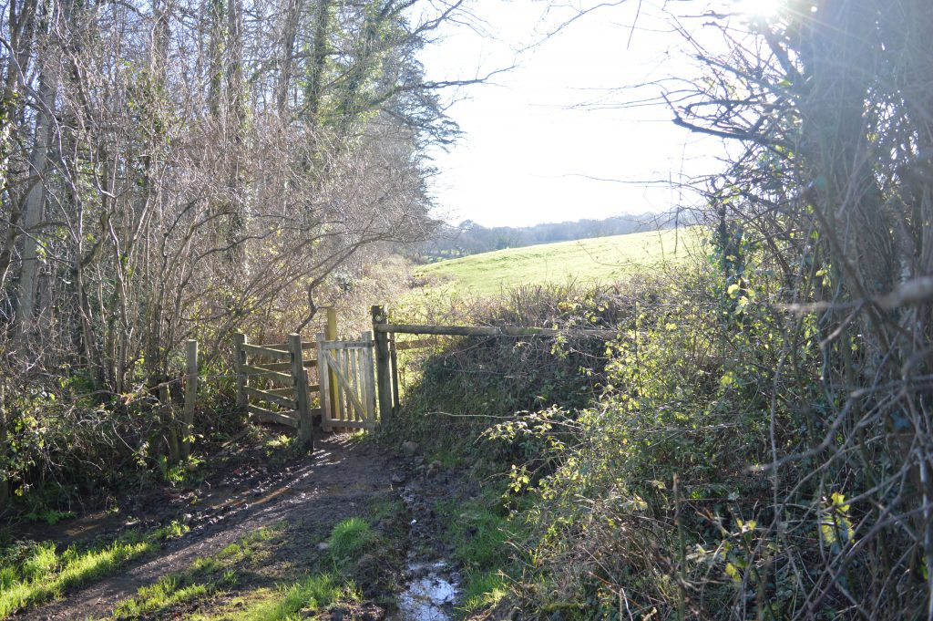 Through the kissing gate, to leave Westover Farm