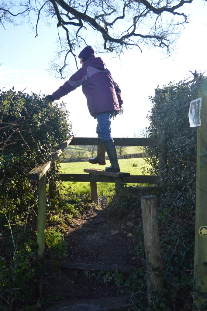 Over the stile into Big Mead