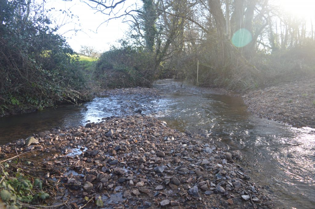 The Westover Stream joins the Wootton Stream. Look out for a Kingfisher and a Dipper