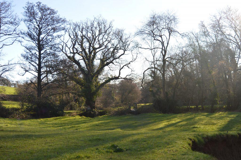"Towards the ""Long"" bridge by the ancient oak"