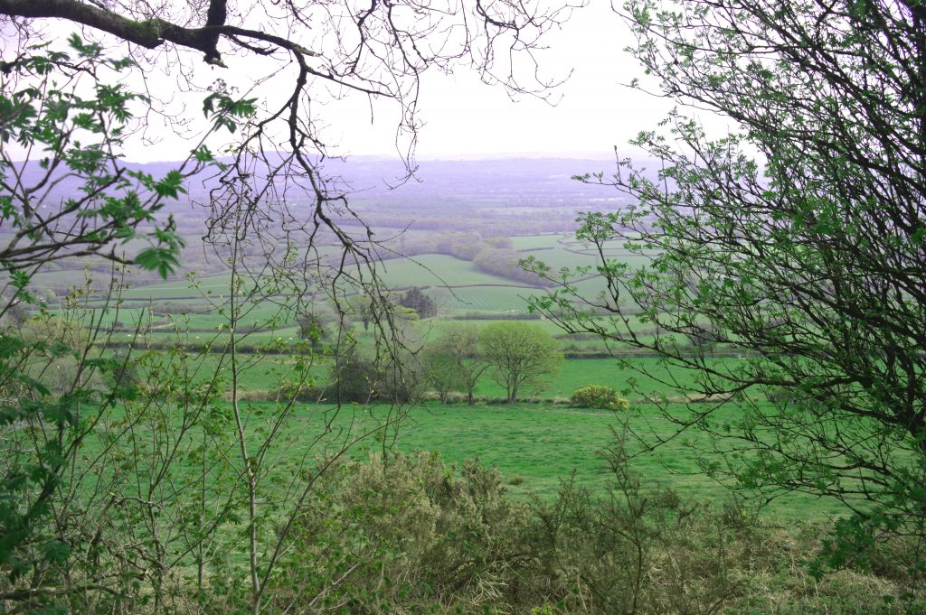 Views across the Marshwood Vale