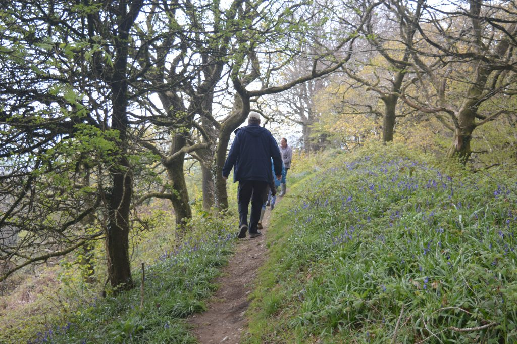 Coneys Castle path