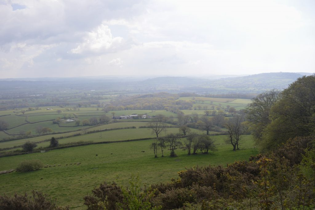 View towards Whitchurch