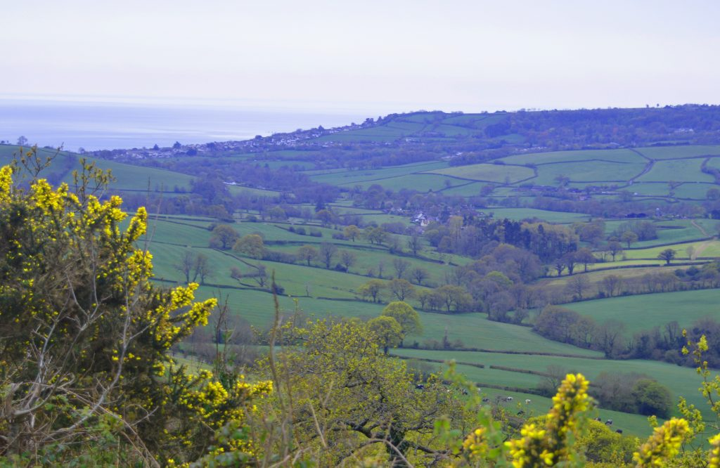 View to the South West with Westover Farm (mid-right) and the sea at Charmouth