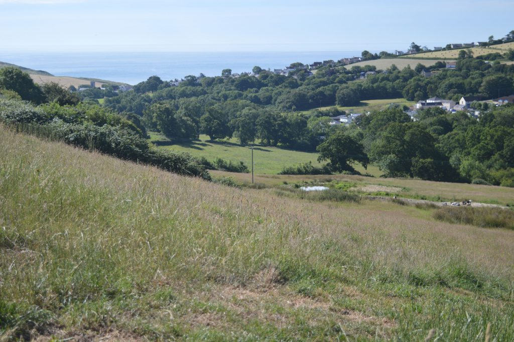 View down the valley to Charmouth